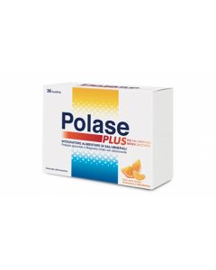 Farbene.shop | POLASE PLUS 36 BUSTINE PROMO